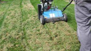 Mosfjerner / Plænelufter køre på græsplæne